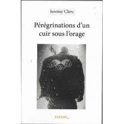 Pérégrinations d'un cuir sous l'orage de Jérémy Clerc.