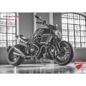 Catalogue original DUCATI DIAVEL 1200 cc de 2017